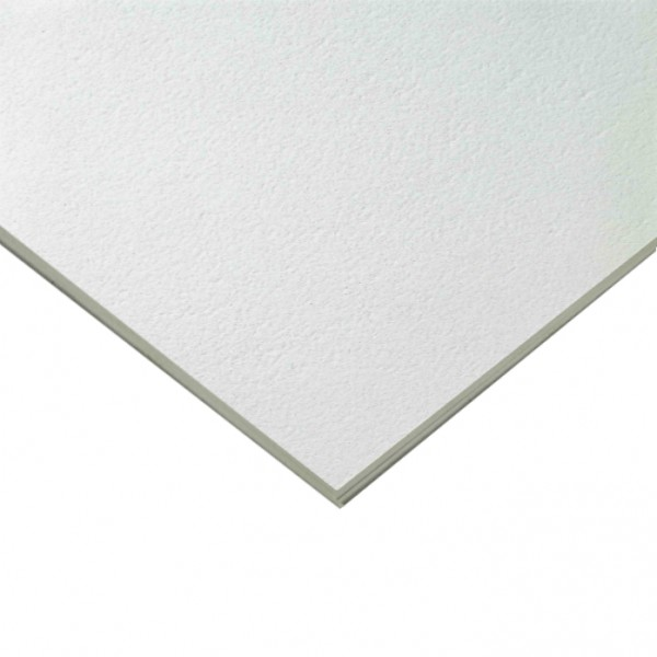 Armstrong Bioguard Plain Bp2221m Suspended Ceiling Tiles
