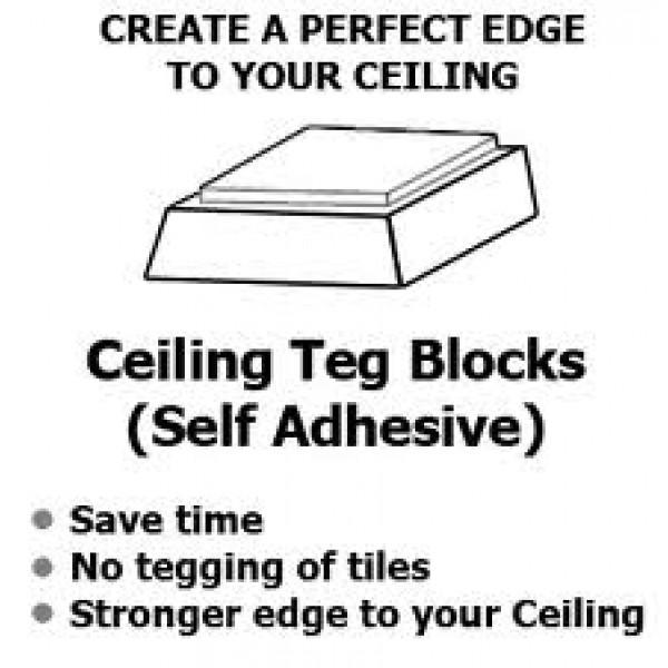 Suspended Ceiling Teg Blocks