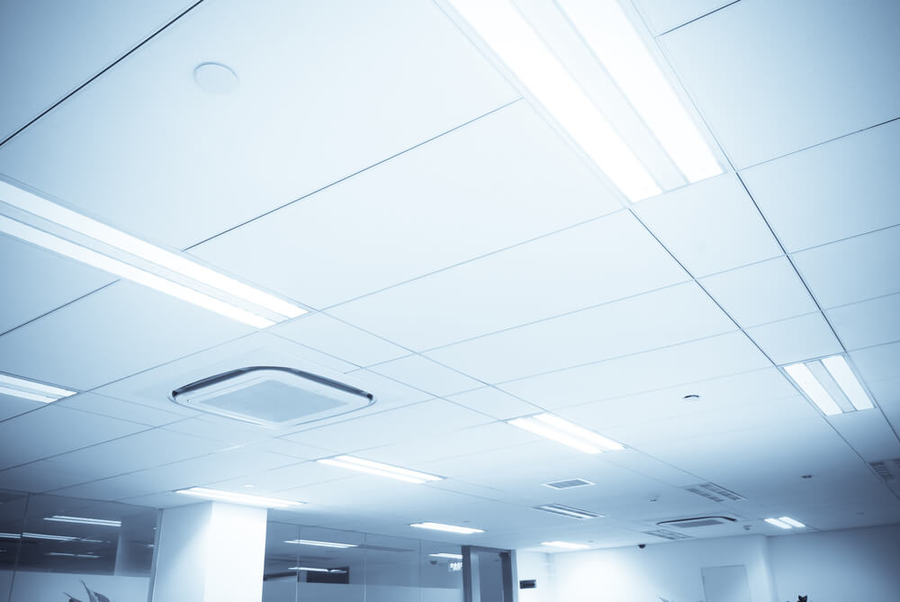 Fluorescent Lighting in Office Ceiling Grid