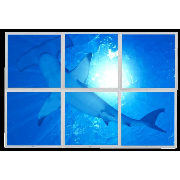 Lumigo - Hammer Head Shark LED Panels